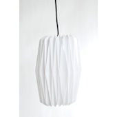 Glenna Jean Accordian Hanging Light