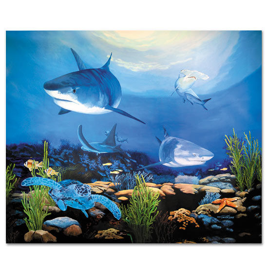 Bella Baby Art Shark Underwater Wall Art The Frog And