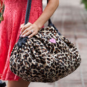 Lollipop Leopard GoGo 5 In 1 Tote And Cover