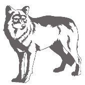 Wolf - Sudden Shadows Wall Decals