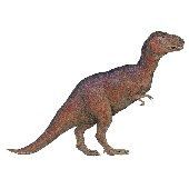 T Rex Dinosaur Peel and Stick Wall Mural