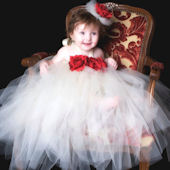 Holiday Ruby Red And Ivory Tutu Dress