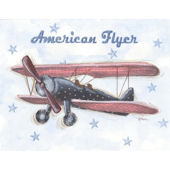American Flyer Framed Wall Art