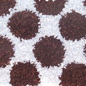 Polka Mania Brown Area Rug