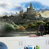 Harry Potter Chair Rail 6 x 10 XL Wall Mural