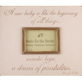 A New Baby Pink  Picture  Frame